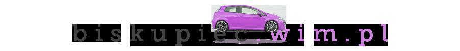 Punkty karne | Prawo jazdy - http://biskupiec.wim.pl/